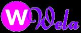 Студия веб дизайна Wela
